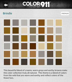 gray and tan paint colors that go together