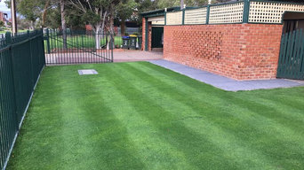 Penncross Bentgrass  Lawn- Adelaide, South Australia