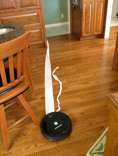I Found Now There Are Too Many Horror Stories On That Website Involving  Roombas And Pet Accidents. But, I Found This Photo, Too. :)