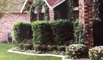 Landscape Projects and Curbing