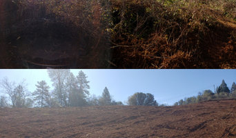 Defensible space and forest fire fuels reduction