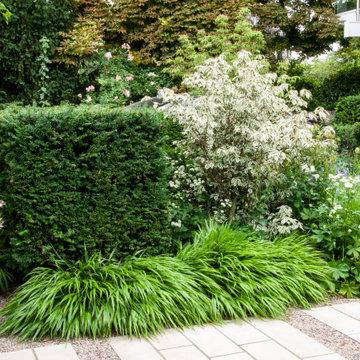 Small Contemporary Garden Blackheath