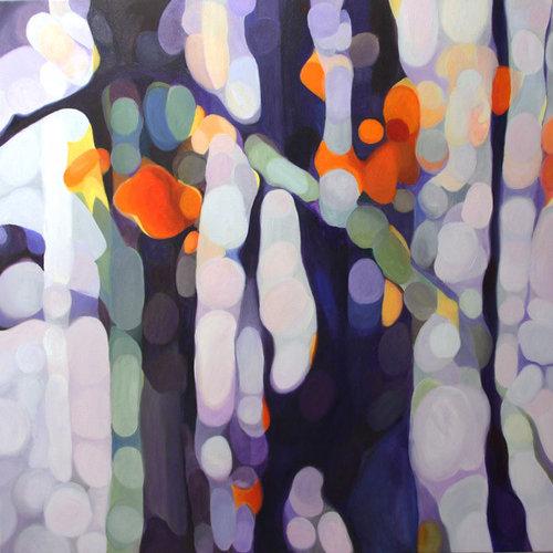 Colorado Woods - Fine Art Prints