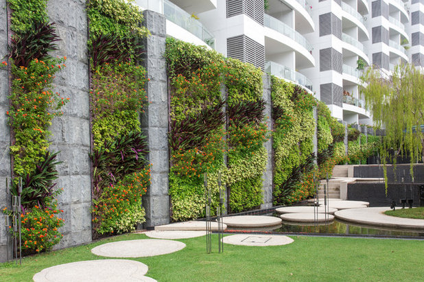 Contemporary  by Vertical Green