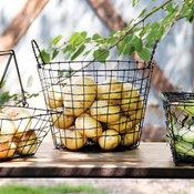 Rustic Wire Potato Basket