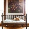 Un déménagement sans stress pour vos animaux