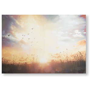 """Serene Sunset"" Meadow Printed Canvas"