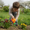 Photo Tips to Help You Capture the Beauty in Your Garden