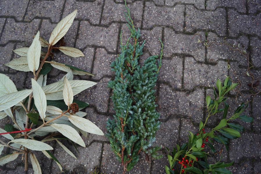 Bæredygtigt gran og pyntegrønt
