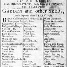 williamsburg 1775 vegetable list