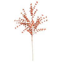 Botanica #977