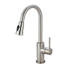 Motegi Single Handle Pull-Down Kitchen Faucet, PVD Brushed Nickel