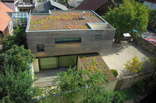 Contemporain Façade by [lu:p] Architektur GmbH