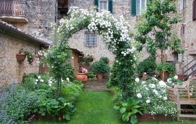 Il Giardino del Mese, Dall'Ombra alla Luce