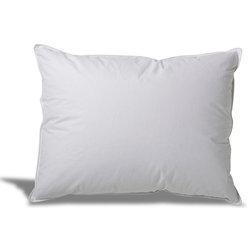 Contemporary Bed Pillows Down Alternative Hypoallergenic Pillow