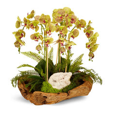 Orchid and Geode in Wood Bowl, Green