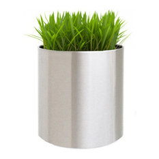 Knox Brushed Stainless Steel Planter, Large