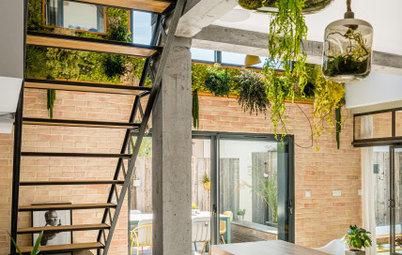 Green thérapie : 17 façons de végétaliser un mur intérieur