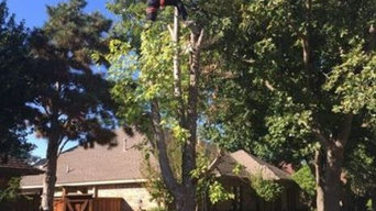 Tree Removal in Richardson, TX
