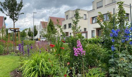 Сад недели: 4 сотки в Берлине — угловой участок