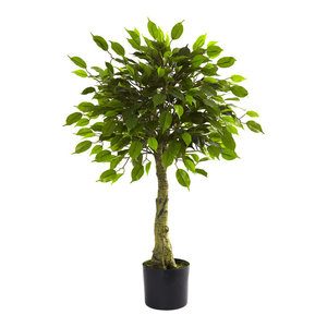 Nearly Natural 6937 2/' Cycas Artificial Tree UV Resistant 2 Green Indoor//Outdoor