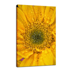 """Joyful Color"" Floral Nature Photography Fine Art Canvas Wall Art Print, 11""x14"""