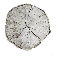 """Woodland Years I on White"" Paper Art, 36""x36"""