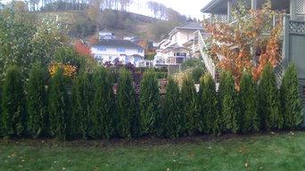 Tree Showcase