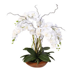 Phalaenopsis Silk Orchid With Curly Willow and Succulents
