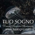Tuo Sogno: Dream Surfaces Showroom's profile photo