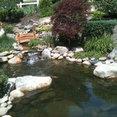 Foto de perfil de CMB Landscaping Services
