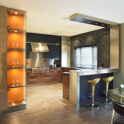 Home Bar Design Ideas Houzz: Stainless Steel Bar Design Ideas & Remodel Pictures