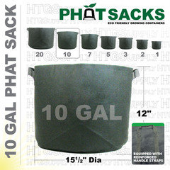 what are the dimensions of a 10 gallon pot?