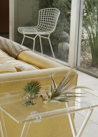 ミッドセンチュリー  Eclectic Eichler living room