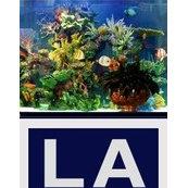 Captivating Living Art Aquatic Design Inc