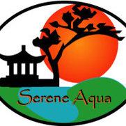 Serene Aqua's photo