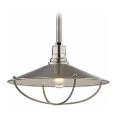Apex RLM 14-Inch Satin Nickel Pendant Light with Cage