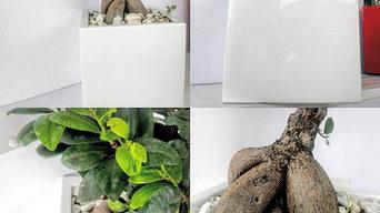pots et bacs a fleurs en résine polyester