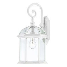 """Boxwood 1 Light - 19"""" Outdoor Wall With Clear Beveled Glass"""
