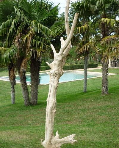 Sculpture bois flott for Bois flotte sculpture