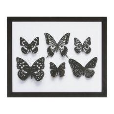 """""""Botanical Butterflies"""" Framed Print, 40 x 50cm"""