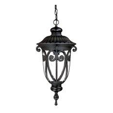 "Acclaim Lighting 2116 Naples 1 Light 20.5""H Outdoor Pendant - Matte Black"