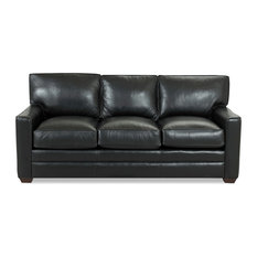 Leather Black Sofa Beds & Sleeper Sofas