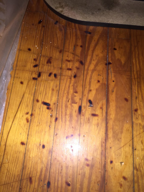How To Get Cigarette Burns Out Of Wood, How To Get Smoke Smell Out Of Laminate Flooring