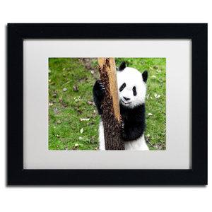 Philippe Hugonnard Giant Panda V Art Contemporary Photographs By Trademark Global