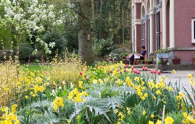 31 Dinge, die Sie jetzt im Garten erledigen können