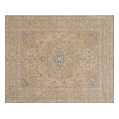 Transitional Beige 5'x8' Area Rug