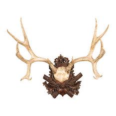 Mule Deer Antler Plaque