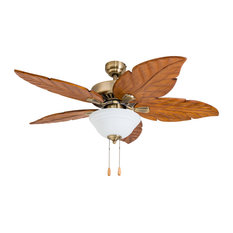 Bestselling tropical ceiling fans for 2018 houzz palm coast imports punta cana indoor ceiling fan with bowl light and remote aged aloadofball Gallery