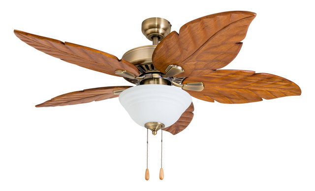 Punta Cana Indoor Ceiling Fan With Bowl Light and Remote, Aged Brass ...